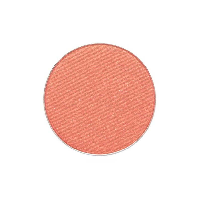 COASTAL SCENTS HOT POTS Dark Salmon B10