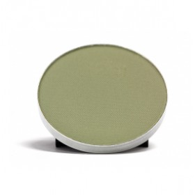COASTAL SCENTS Hot Pots Olive