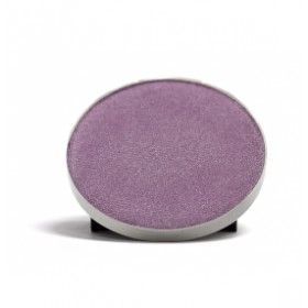 COASTAL SCENTS Hot Pots Perfect Plum